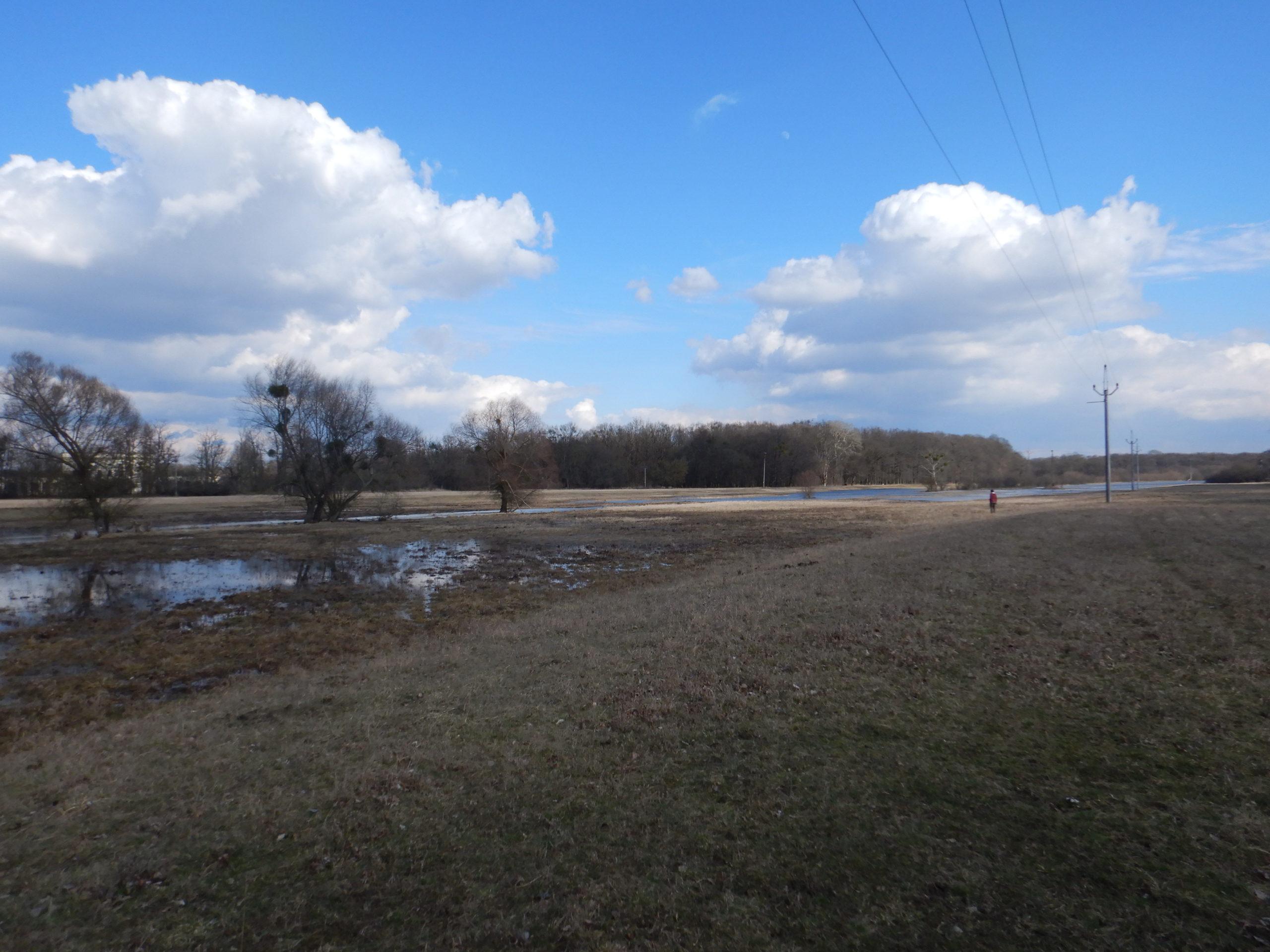 Povodňování – luh při soutoku Moravy a Dyje1 min čtení